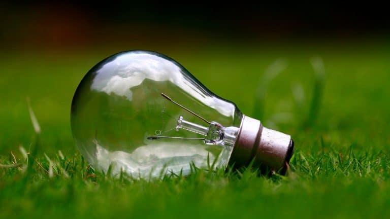 Des actes pour éduquer à l'écologie